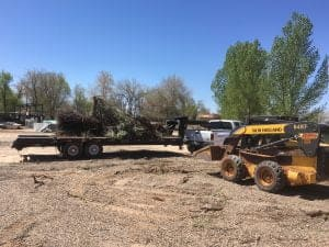 Skid Steer in Fredonia AZ