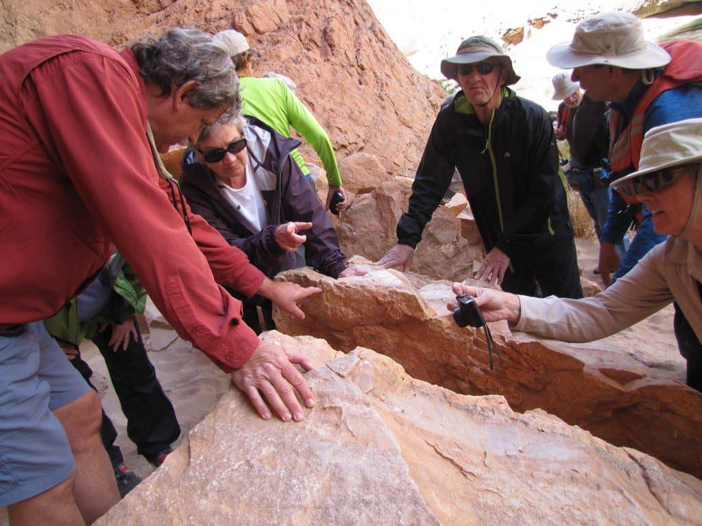Wayne Ranney showing fossils at Redwall Cavern