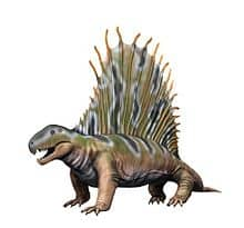 Dimetrodon lived during the deposition of the Coconino Sandstone.