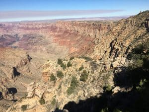 The Toroweap Formation in Grand Canyon