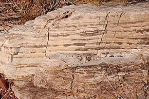 Bass Limestone Grand Canyon Geological Layer