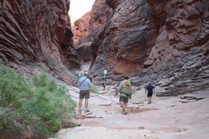Supai Formation in North Canyon