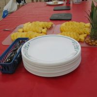 Plate and pineapple for cuisine on Colorado River expedition.