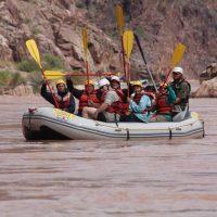 Paddle boat triumphant paddle raising.